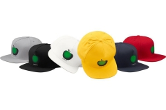Apple 5-Panel: ca. 56€